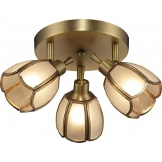 Спот Altalusse INL-9317C-03 Golden Brass